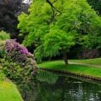 10 fotografii relaxante din natura!